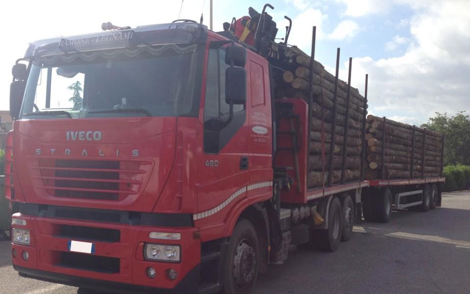 camion trasporto legno